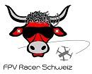fpv_racer_schweiz